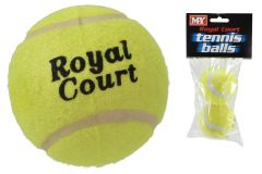 2 Pack Tennis Ball in Polybag