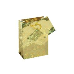 Gift Bag Small Holographic Assorted Colours W120 x H160 x D65mm