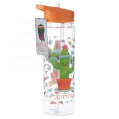 Cactus Water Bottle 500ml